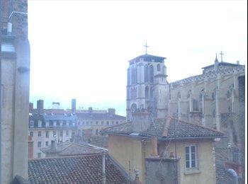 loue chambre 18 mètres carrés. Vieux Lyon.