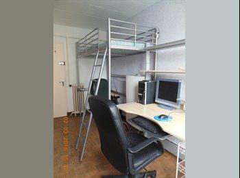 Chambre à louer chez l'habitant Ile de Nantes