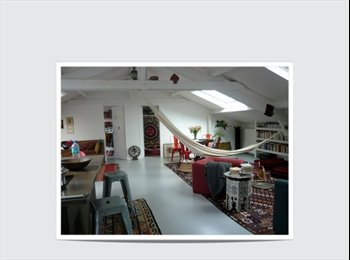 Cherche colocataire(s): loft 11e Paris