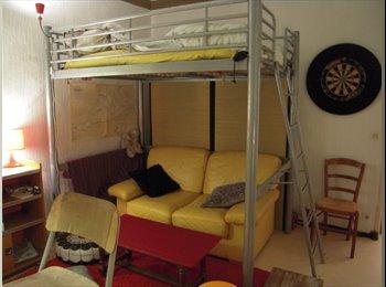 SOUS LOCATION T 1 meublé HYPER CENTRE LA PLAINE