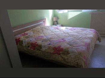 loue chambre dans appartement
