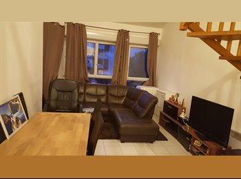 Chambre à louer à Toulouse dans un T3 en duplex
