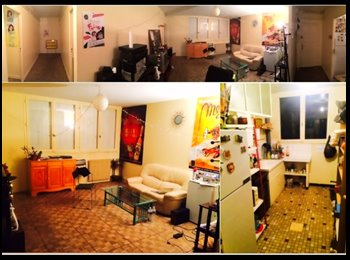 Appartager FR - Colocation dans un grand appartement à Rangueil - Empalot - Saint Agne - Sauzelong, Toulouse - 283 € /Mois