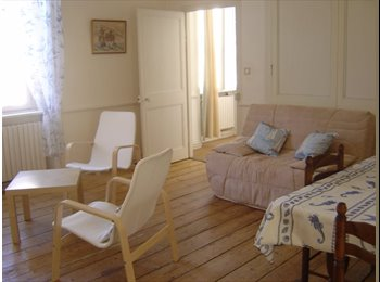 grand appartement avec 2 chambres