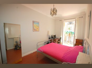Large Quiet Double Room for Single Occupancy