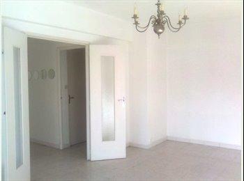 Appartement vide disponible à la colocation