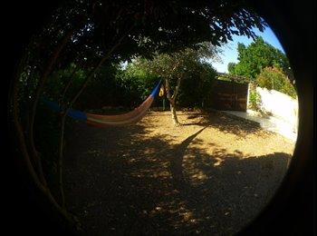 Appartager FR - COLOCATION à 4 ou plus dans très belle maison situé Montfavet proche INRA - Montfavet, Avignon - 320 € /Mois