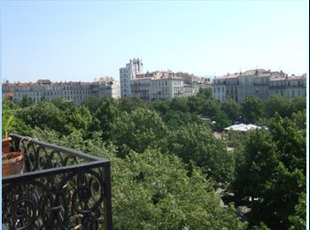 Grand appartement T5