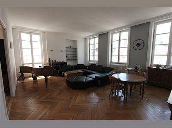 Grande et belle colocation meublée et équipée.