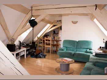 Appartager FR - Colocation Strasbourg centre 88m² - Cathédrale, Strasbourg - 320 € /Mois