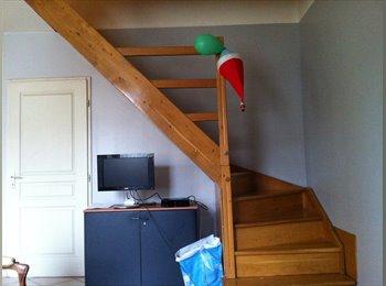 Appartager FR - URGENT 2 chambres disponibles 325e/ mois + APL - 9ème Arrondissement, Lyon - 325 € /Mois