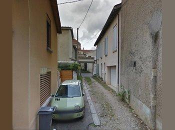 Appartager FR - Recherche colocataire dans appartement - Oullins, Lyon - 320 € /Mois