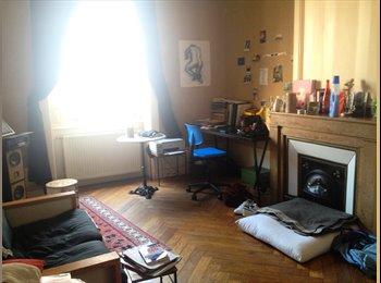 Appartager FR - CHERCHE COLOCATAIRE - 7ème Arrondissement, Lyon - 400 € /Mois