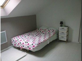 Appartager FR - chambre meublé - Calais, Calais - 300 € /Mois