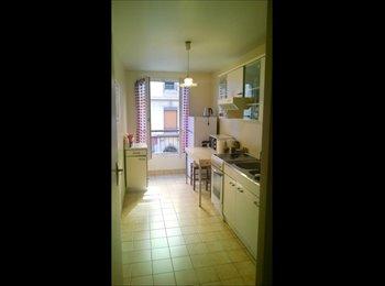 Appartager FR - Je propose une colocation - 7ème Arrondissement, Lyon - 310 € /Mois