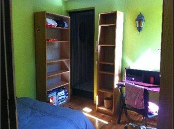 Appartager FR - Chambre à louer dans grand appartement original - Montpellier-centre, Montpellier - 380 € /Mois