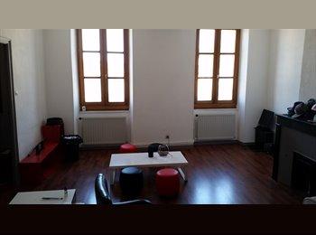 Appartager FR - Cherche Colocation - Le Puy-en-Velay, Le Puy-en-Velay - 260 € /Mois