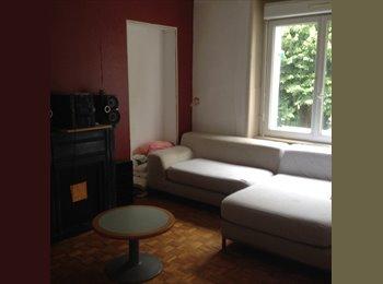 Appartager FR - 2 Chambres à louer proche fac - Brest, Brest - 300 € /Mois