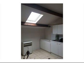 Appartager FR - 4 chambres â louer dans appartement neuf - Montauban, Montauban - 320 € /Mois