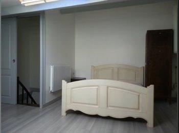 Appartager FR - Charmante maison de village loue 1 chambre 25 m² libre accès aux pièces principales. - Castelsarrasin, Montauban - 300 € /Mois