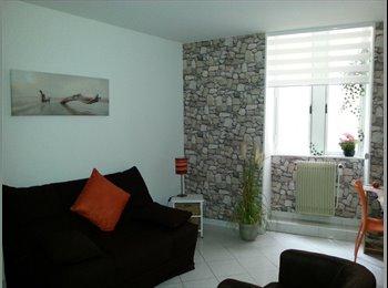 Appartager FR - Réservez vite votre belle chambre dans un appartement CENTRE VILLE colocataire très sympathique - Nîmes, Nîmes - 470 € /Mois