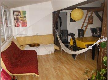 Recherche colocataires dans appartement de 150m²