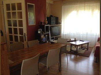 Appartager FR - Colocation maison à Valentigney - Valentigney, Belfort - 290 € /Mois