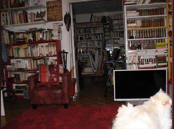 Chambre dans un appartement Paris XIV