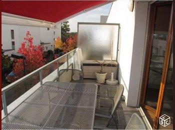 colocation appartement/belle terrasse / Rennes-St Jacques -...