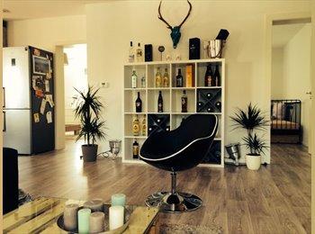 Appartager FR - schöne offene 4 Zimmerwohnung - Illkirch-Graffenstaden, Strasbourg - 350 € /Mois