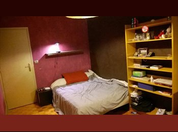 Appartager FR - Colocation Villeurbanne, proche Doua, Tête d'Or, Lyon 6è - Villeurbanne, Lyon - 350 € /Mois