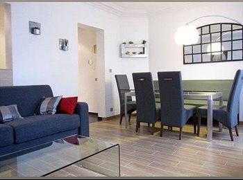 Appartager FR - LOCATION APPARTEMENTS DE CARACTÈRE 64M² - 1er Arrondissement, Lyon - 430 € /Mois