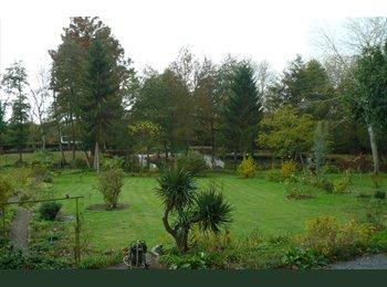 Appartager FR - Pour passionné (e) des vieilles pierres, charmant parc à l anglaise et animaux : chiens, chats, âne, - Saint-Germain-des-Prés, Saint-Germain-des-Prés - 550 € /Mois