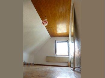 Appartager FR - Recherche Colloc dans une maison - libre de suite - Hœnheim, Strasbourg - 317 € /Mois