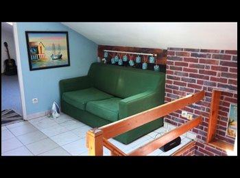 Appartager FR - Bonjour, Je laisse ma place en colocation dans superbe duplex - Champigny-sur-Marne, Paris - Ile De France - 430 € /Mois