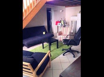 Appartager FR - Chambre meublée à sous-louer dans un bel appartement de 110 m² - 5ème Arrondissement, Lyon - 390 € /Mois