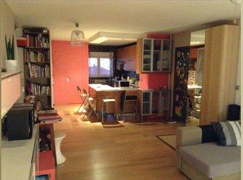 Appartager FR - Chambre à louer dans T3 agréable  - 8ème Arrondissement, Lyon - 375 € /Mois