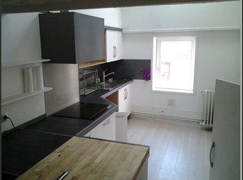 Appartager FR - Appartement à louer hyper centre Nancy - Stanislas, Meurthe, Nancy - 1200 € /Mois