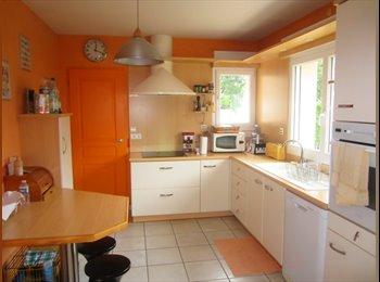 Appartager FR - Marie propose une colocation - L'Isle-d'Abeau, L'Isle-d'Abeau - 350 € /Mois