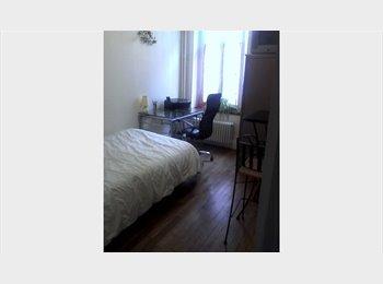 Appartager FR - personne ideale, Nancy - 300 € /Mois