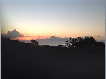 Appartager FR - Cherche coloc dans belle mais - Faa'a, Polynésie Française - 660 € /Mois
