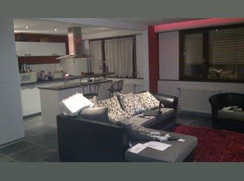 Appartager FR - chambre dans un magnifique  F3 - Schiltigheim, Strasbourg - 320 € /Mois