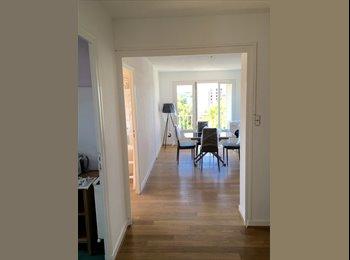 Appartager FR - Appartement design meublé rénové pour louer en collocation rue Faventines à Valence., Valence - 410 € /Mois