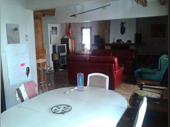 Appartager FR - Grande maison pour gentils colocs - Cholet, Angers - 320 € /Mois