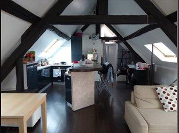 Appartager FR - Colocation Appartement - Antony centre-ville - RER B - Antony, Paris - Ile De France - 700 € /Mois