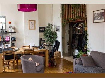 Appartager FR - Colocation spacieuse sur le plateau de la Croix Rousse, Lyon - 550 € /Mois