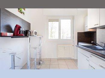 Appartager FR - BEL APPARTEMENT MEULBÉ MULHOUSE PROCHE CENTRE - Mulhouse, Mulhouse - 400 € /Mois
