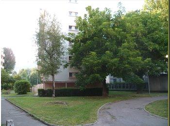 Appartager FR - Par ici, Grenoble et par là, le campus universitaire. Au centre : ta coloc, Grenoble - 320 € /Mois