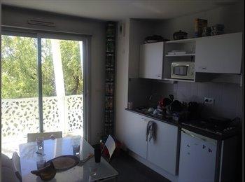 Appartager FR - Colocation Montpellier quartier château d'ô  - Hôpitaux-Facultés, Montpellier - 320 € /Mois