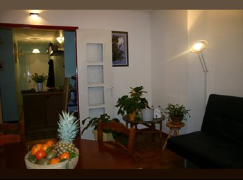 Colocation dans appartement de 80m²
